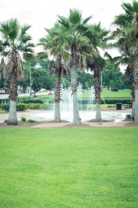 The lawn, trees, and fountains at the Summerdale, Alabama Splash Park